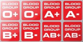Helmet Blood Type ID Stickers PAIR