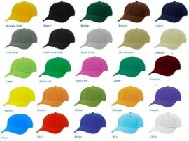 Custom Warden Hat