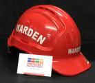 Warden Helmet - WARDEN